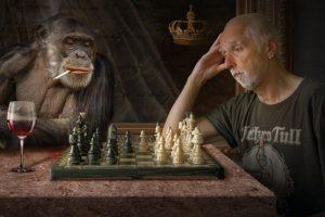 サルでも分かる、ホームページで成果を出す方法をご紹介しています。